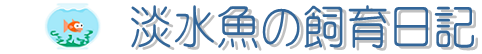 淡水魚飼育の水槽事情 | 日本淡水魚の飼育日記