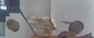 イシマキガイ